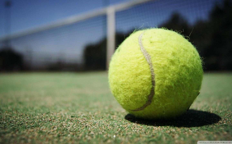 网球壁纸_阿兰美女网球宽屏体育运动2012Y十月26D