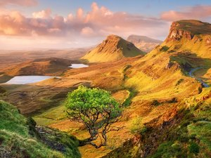 安卓春意盎然 风景 风光 美景 旅游 自然 春天 清爽手机壁纸