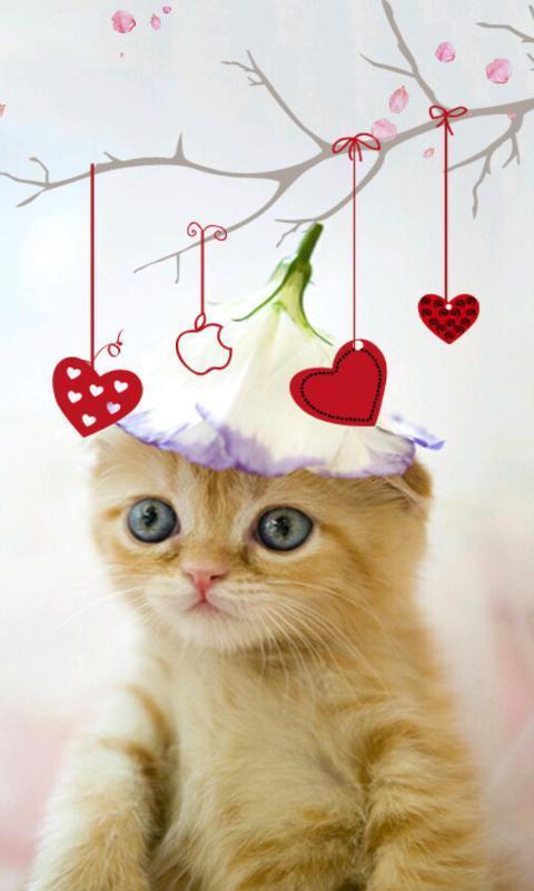 >喵星人主题动态壁纸  喵星人是由绿豆动态壁纸diy出品的一款可爱猫