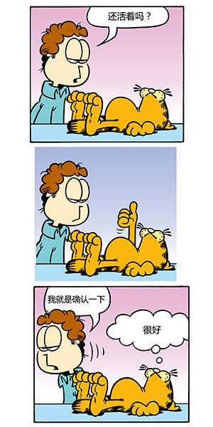 加菲猫也会想看书,主人也不得不看书