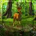 3D晨光森林