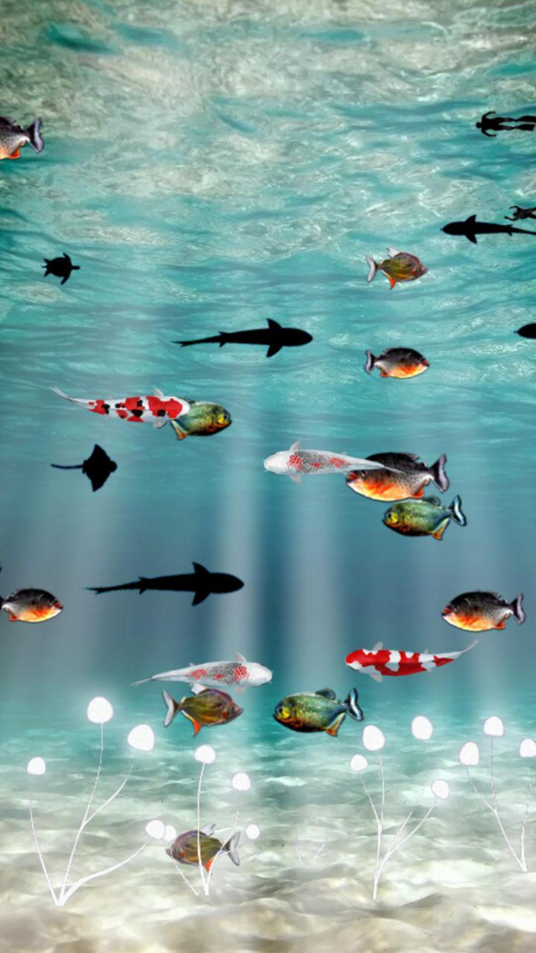 海底世界主题动态壁纸3