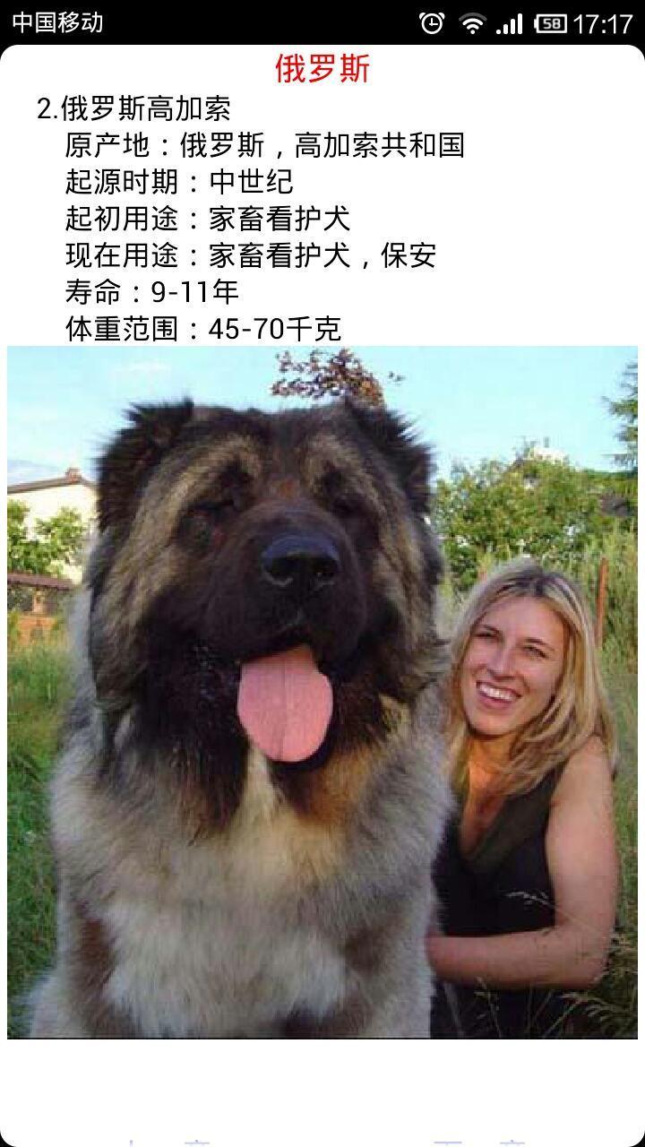 世界名犬大全_360手机助手