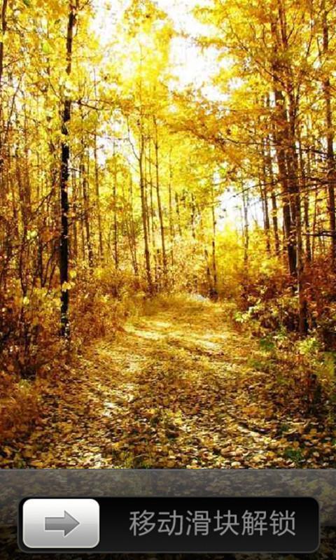 一幅幅秋天的风景图让我们感受到了收获即将到来,秋意盎然风景锁屏2.