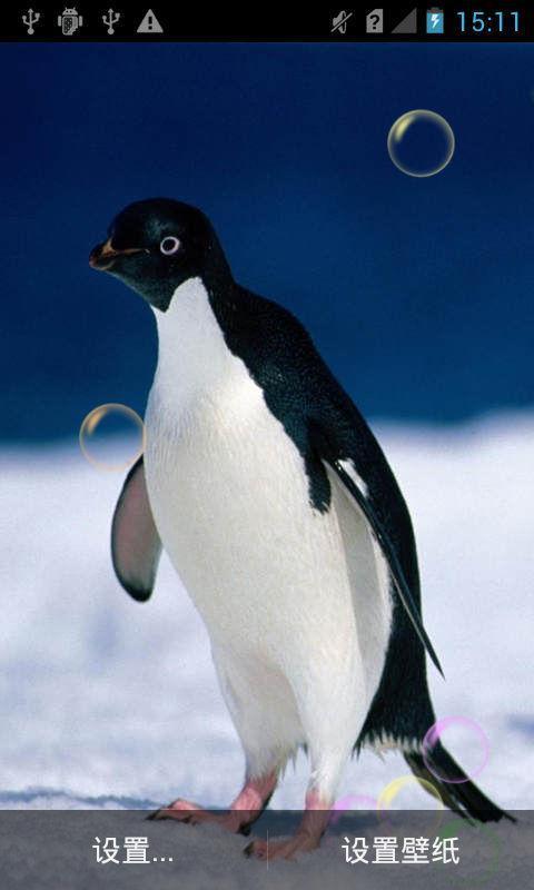可爱企鹅动态壁纸下载_v1.2_安卓手机版apk-优亿市场
